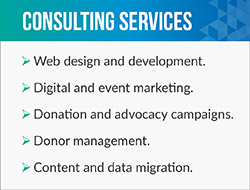 DNL OmniMedia is your nonprofit's go-to web consulting agency.