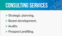 Ellen Bristol is a fundraising consultant who offers services such as strategic planning.