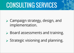 Carole Rylander helps nonprofits with campaign strategy, board assessments, and so much more.