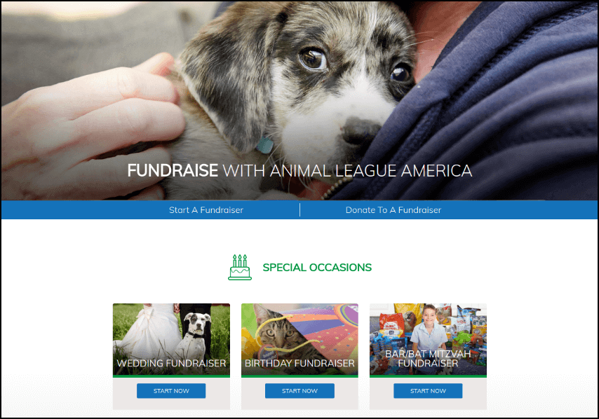 North Shore Animal League customized their peer-to-peer platform to include special occasions.