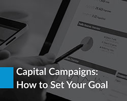 Set the right capital campaign goals with Averill Fundraising Solutions' in-depth guide.