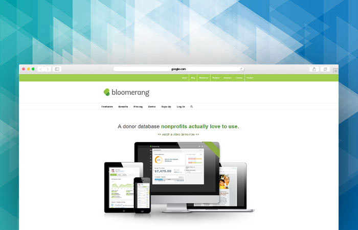 Check out Bloomerang's powerful tools and fundraising software!