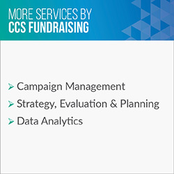 Consider these additional services CCS Fundraising provides in addition to executive search.