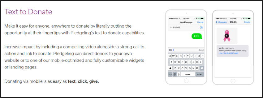 Learn more about Pledgeling's text-to-donate service on the website.