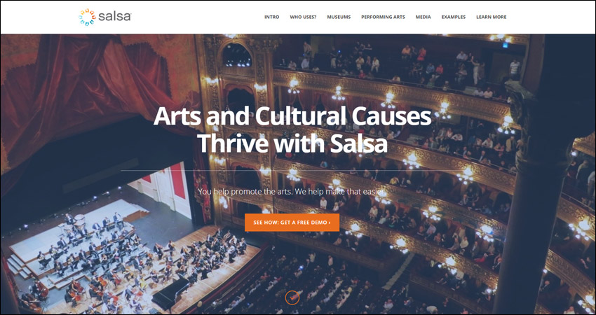 Salsa Labs museum software supports membership programs and fundraising events.