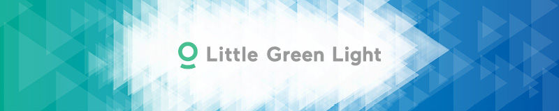 Read to learn about Little Green Light, a top fundraising software.