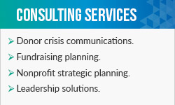 These are Aly Sterling Philanthropy's fundraising consulting services.