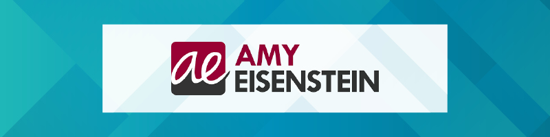Amy Eisenstein is one of our favorite nonprofit consulting firms.